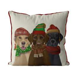 Labradors with Hats and Scarves