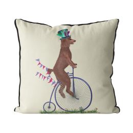Poodle Brown on Penny Farthing