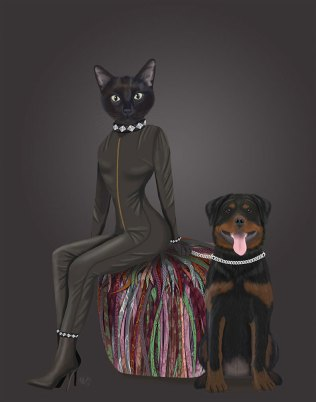Black Cat and Rottweiler