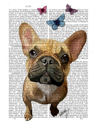 Brown French Bulldog and Butterflies