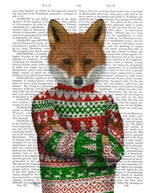 Fox in Christmas Sweater