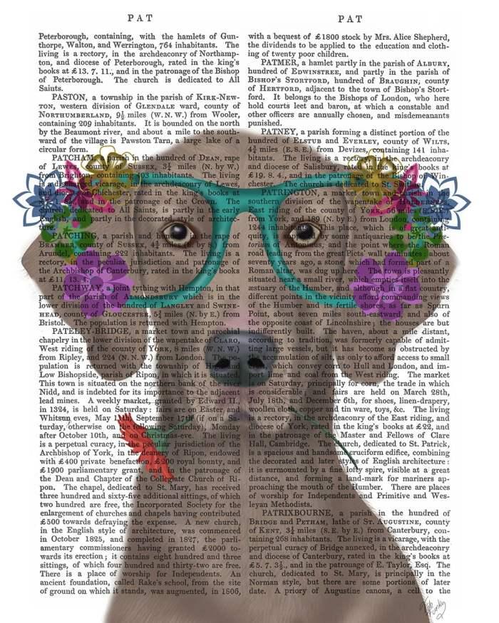 Weimaraner  and Flower Glasses