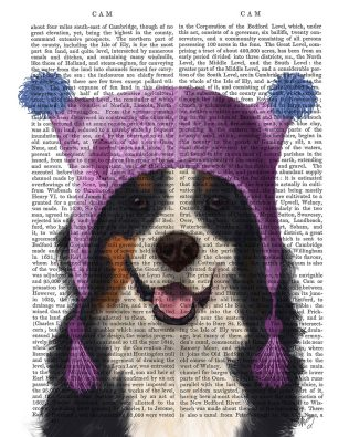Bernese And Bobble Hat