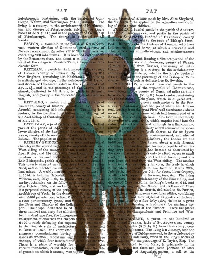 Donkey Blue Hat and Scarf