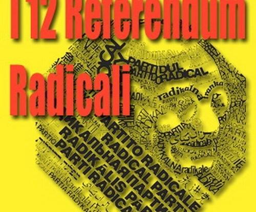 referendum 2013 b