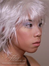Fables in Fashion Lookbook #15 Winter Pixie
