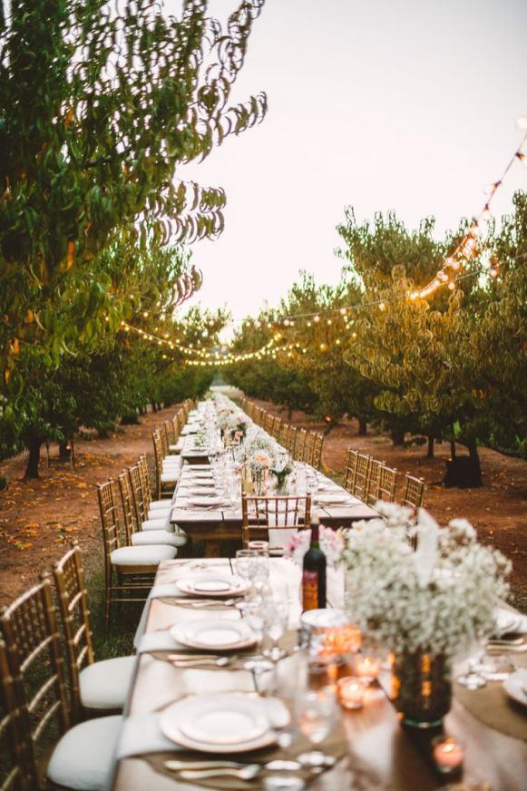 A Cozy Wedding in The Peach Orchard | Photography : marymargaretsmith.com | https://www.fabmood.com/a-cozy-fall-wedding-in-the-peach-orchard #peach #fallwedding
