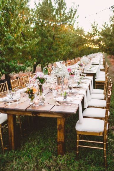 Long wedding table in The Peach Orchard | Photography : marymargaretsmith.com | https://www.fabmood.com/a-cozy-fall-wedding-in-the-peach-orchard #reception #fallwedding