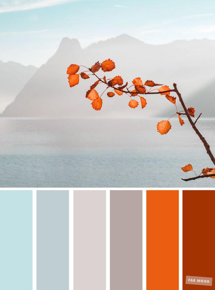 Burnt Orange Light Blue And Grey Color Palette Colors Of Autumn