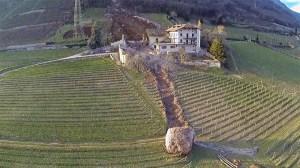 Ferma viticola din Italia, afectata de alunecarile de teren.