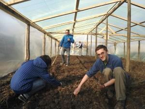 Tineri fermieri: Gabriel si Mihai Corbu