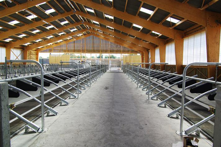 Etable Pour 40 Vaches Laitires Diou 03 FABRIQUES