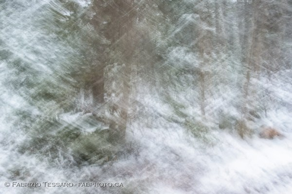 Jasper National Park, Medicine Lake, winter, abstract, impression