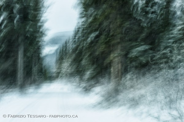Jasper National Park, Medicine Lake, winter, abstract, impression