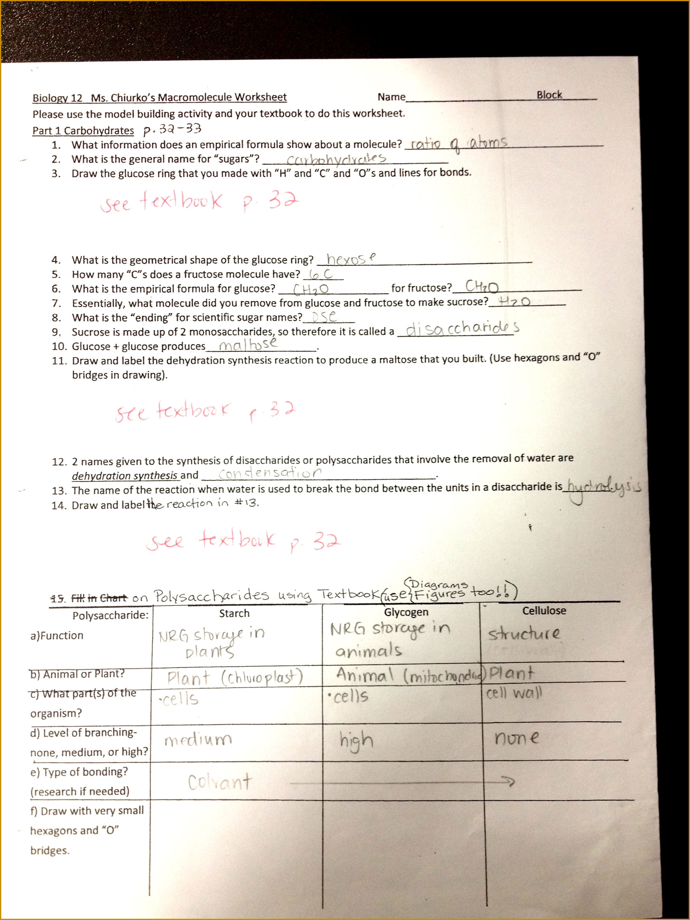 Macromolecules Worksheet Answer Key