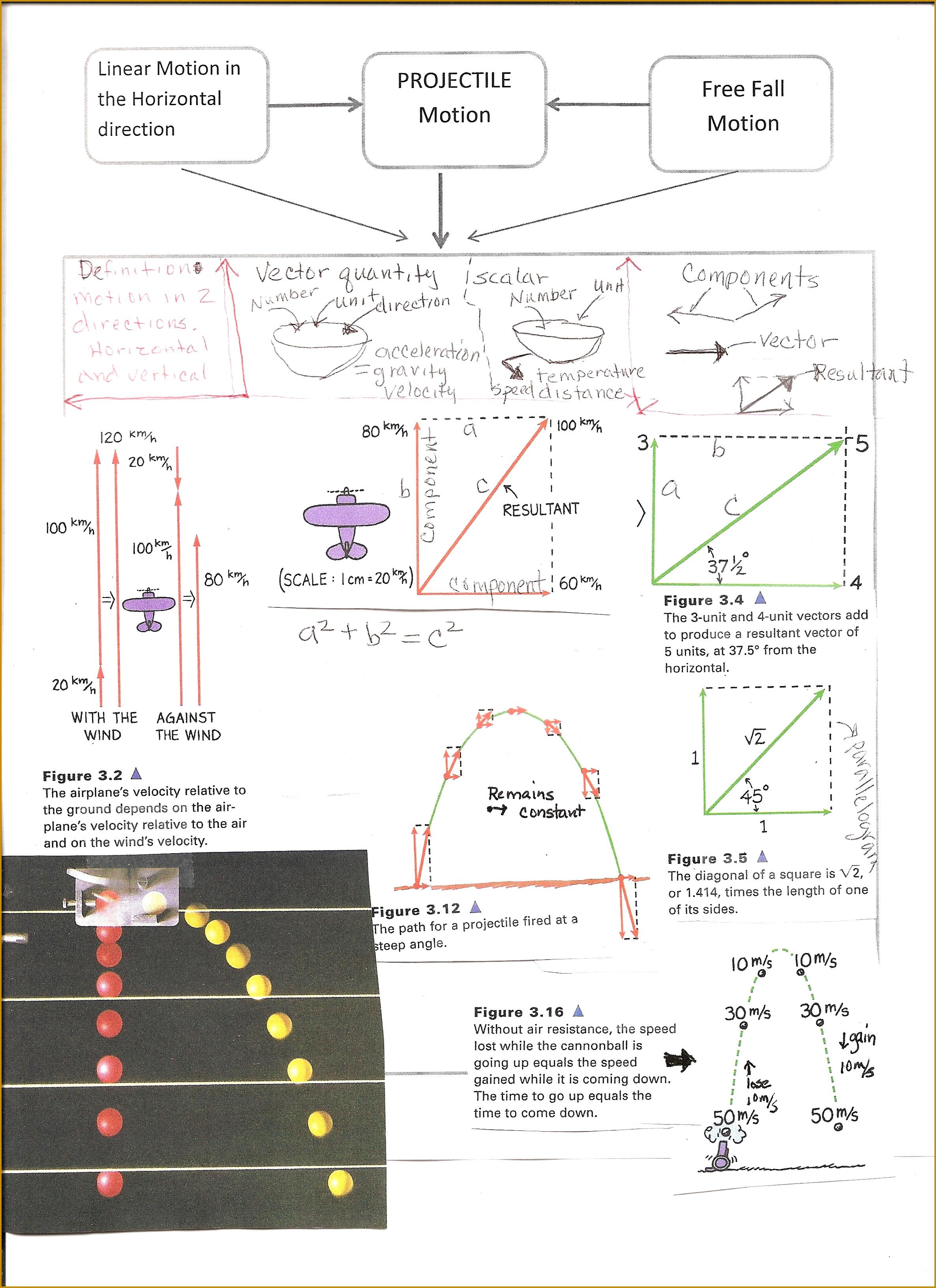 7 Projectile Motion Worksheet