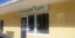 fab-finds-flagler-cats-storefront