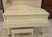 fab-finds-palm-coast-restore-piano
