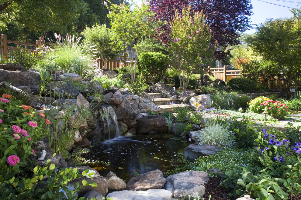 Landscaping Around Koi Pond
