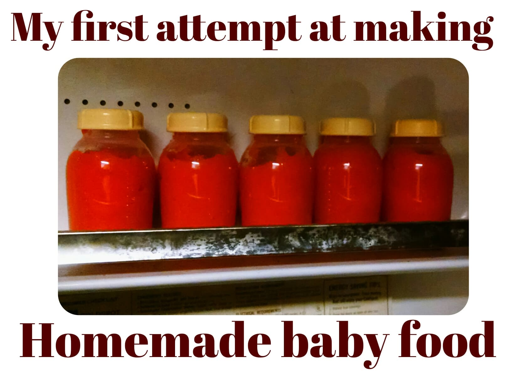Making homemade baby food, my first attempt and some tips I learned