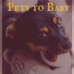 Introducing Pets to Baby