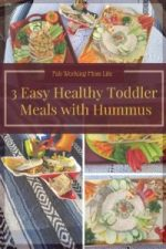 3 Easy Healthy Toddler Meals with Hummus