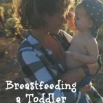 Breastfeeding-a-Toddler.-Real-Moms-Talk.-Diary-of-a-New-Mommy.-Breastfeeding.-