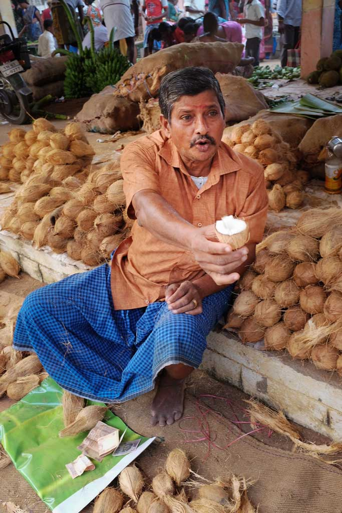 A South Indian coconut seller wearing a long denim-blue dhoti and ochre coloured button up shirt, sits on the ground amongst his piles of young unhusked coconut, and extends his hand out to offer a half cut coconut in a gesture of friendship.