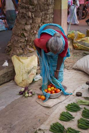 An elderly South Indian woman wearing a turquoise blue sari and a perfectly coiffed bun at the back of her head leans over to inspect the small bowl of ripe red tomatoes at her feet, as the fabric of her dress gently embraces the rim of the steel bowl.