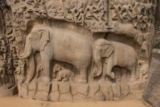 Detail carving from Ganges Descent (Arjuna's Penance)