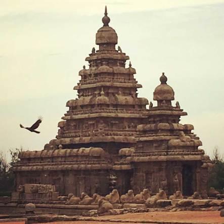 Shore Temple, 8th century C.E.