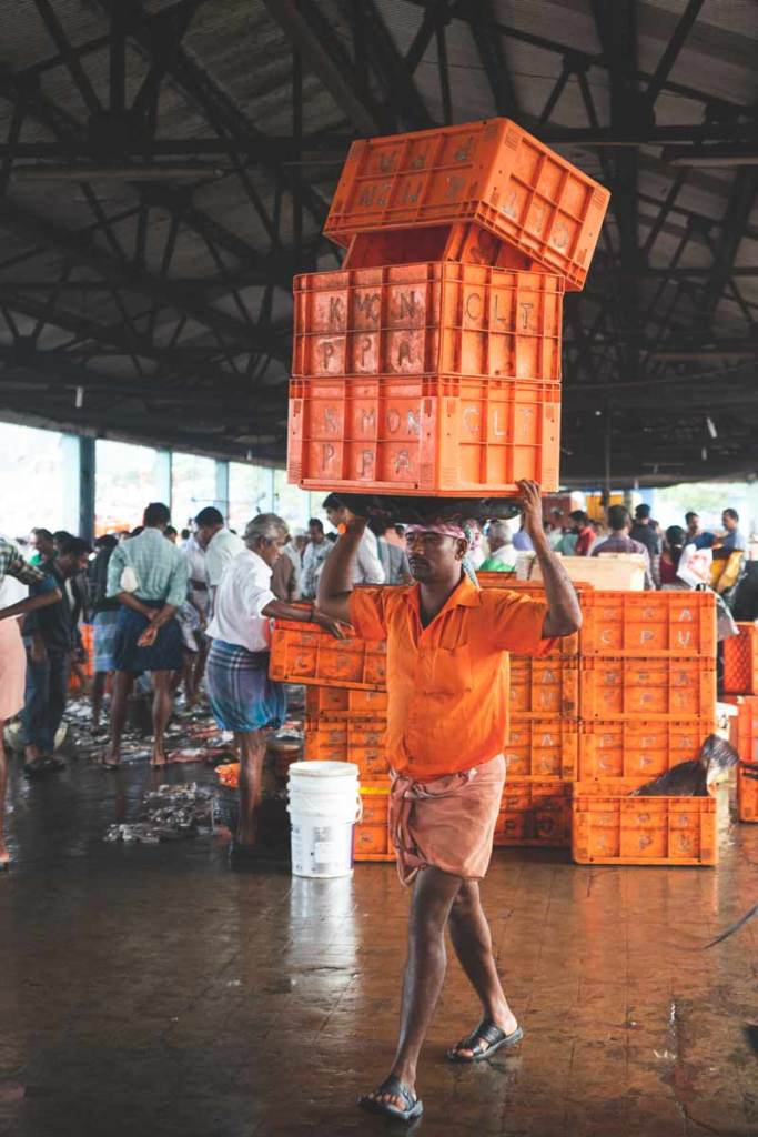 Kozhikode Fish Auction _Man-carrying-Crates-above-head