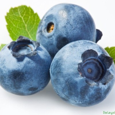 Image of Blueberry Sunshine Blue