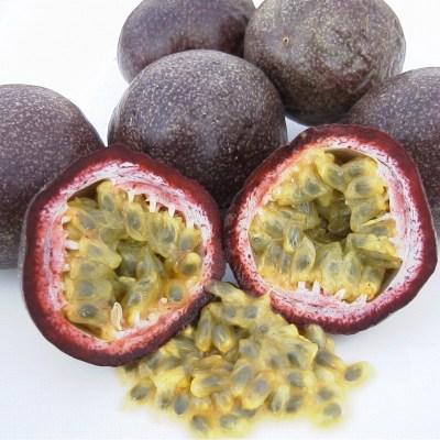 Image of Passiflora edulis 'Black Passionfruit'