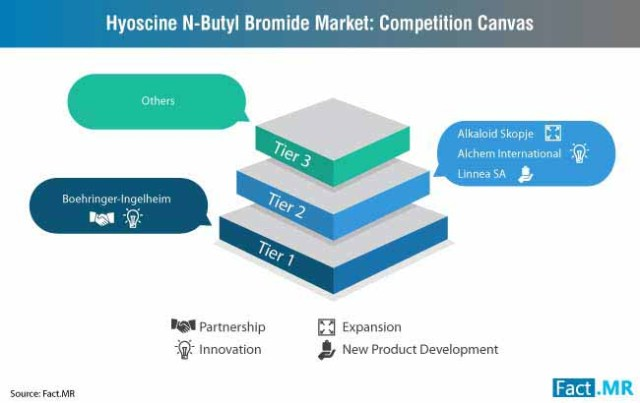 hyoscine n butyl bromide market competition canvas