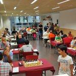 2016-ajedrez-quart-08
