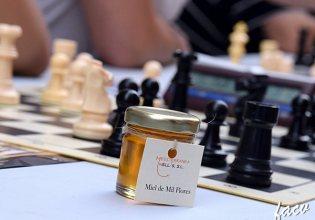 2017-montserrat-ajedrez-w07