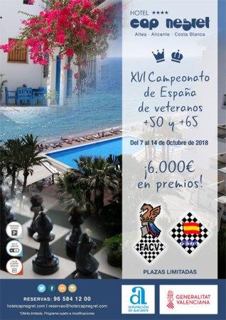 cartel campeonato España veteranos ajedrez