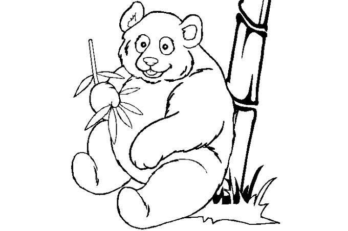 صور حيوانات للتلوين للأطفال رسومات تلوين للأطفال الإبداع الفضائي