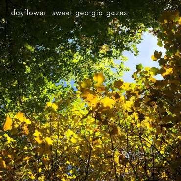 Dayflower – Sweet Georgia Gazes premiere!