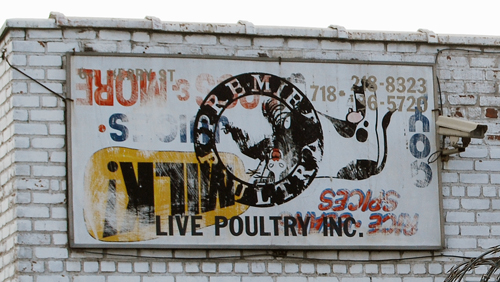 Greenpoint Poultry