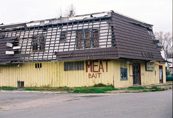 Meat & Bait