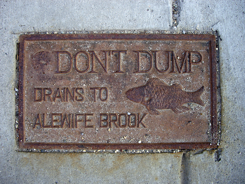 Don't Dump - Drains to Aiewife Brook