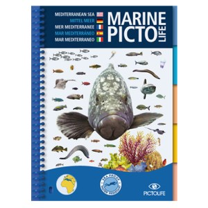 pictolife-mediterranee