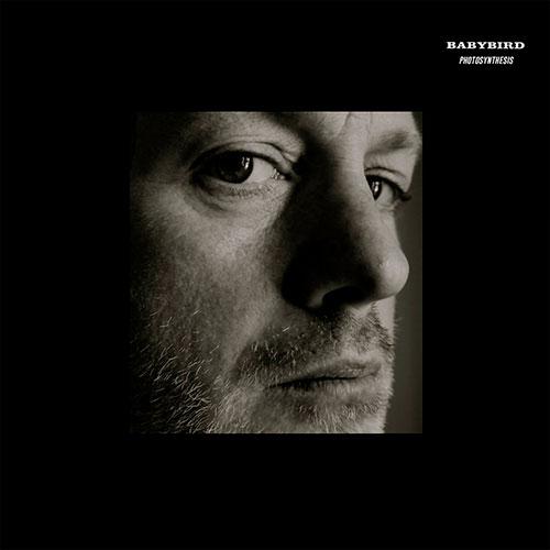 Babybird - No Cameras (artwork faeton music)
