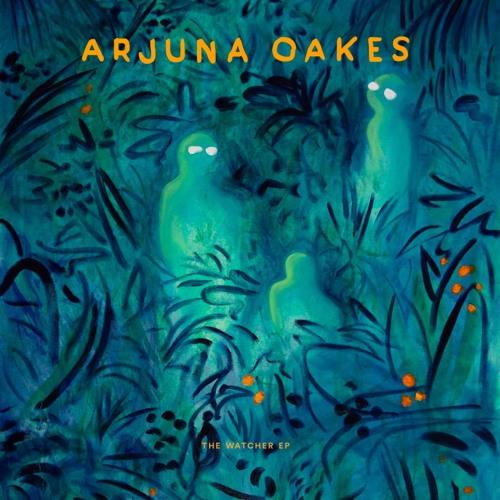 Arjuna Oakes - The Watcher (artwork faeton music)