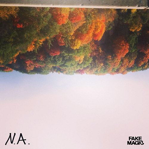 Fake Magic - Always Nice (artwork faeton music)