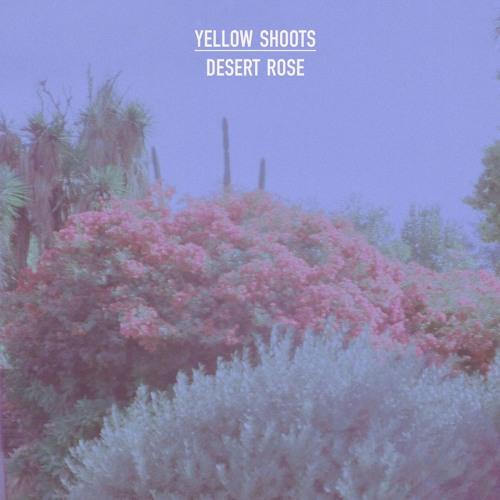 Yellow Shoots desert rose artwork faeton music