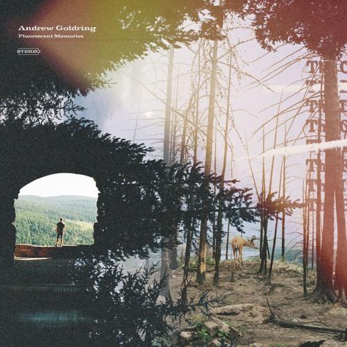 Andrew Goldring - Grey Divide (artwork faeton music)