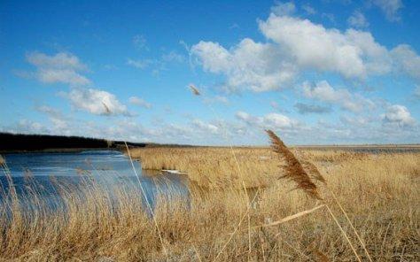 nl flevoland motiv 2015 NBTC (Niederländisches Büro für Tourismus & Convention)